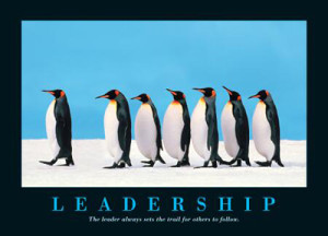 39 Leadership penguins