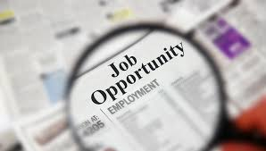 91-job-opportunities